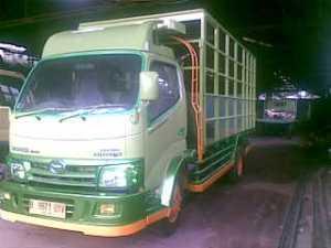 variasi-bak-truk-ayam-04